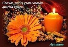 Premio Agualuna